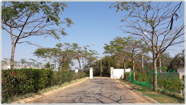 Terra Caxambu - Imobiliaria - Jundiai